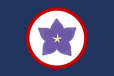 Flag of the Yamatai Star Empire