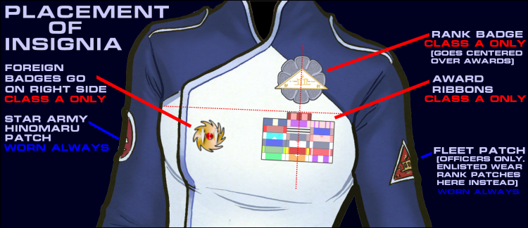 Insignia Placement